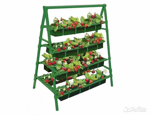 Стеллажи для выращивания клубники