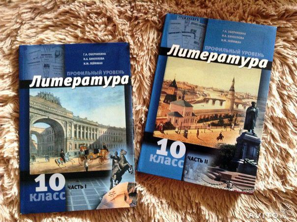 литература обернихина 10 класс скачать