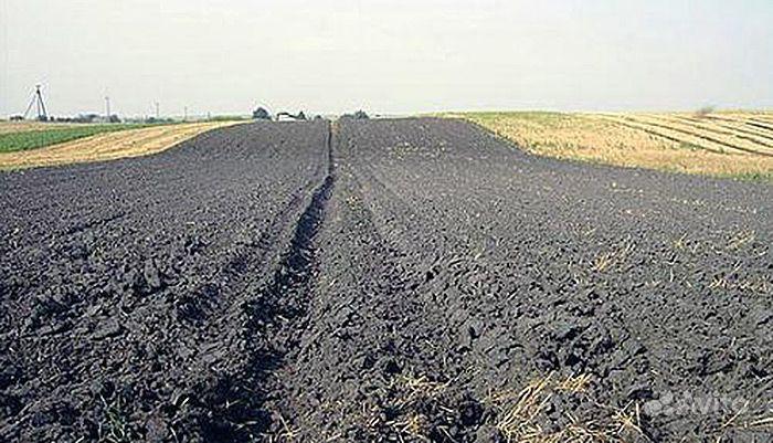 Земля, насыщенная гумусом купить на Зозу.ру - фотография № 1