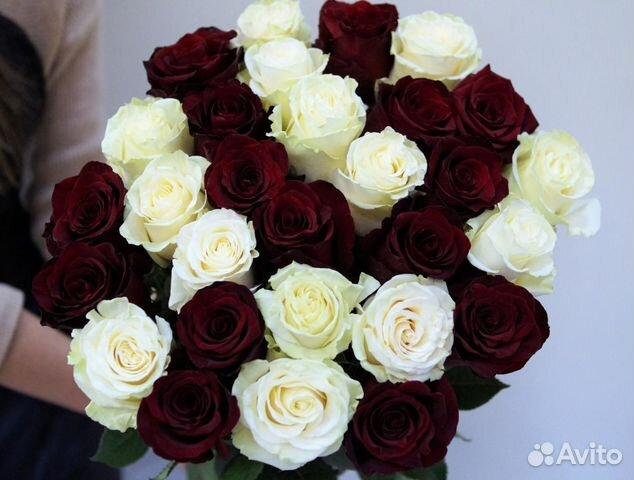 Продают оптом купить цветы на авито спб тюльпанов ирисов фото