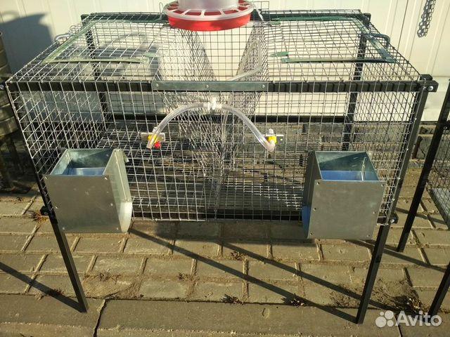 7e0e00d74dcc Клетки для кроликов - купить, продать или отдать в Московской ...