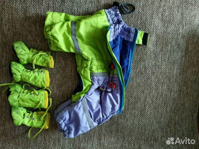 Одежда для собак ставрополь