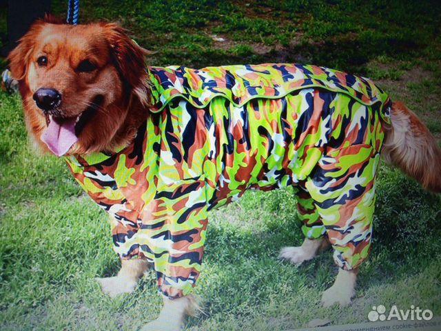 Дождевик для собак 89515899554 купить 5